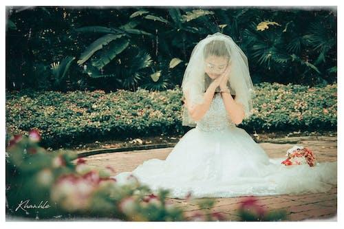 Gratis lagerfoto af årgang, bryllup, codau, da lat