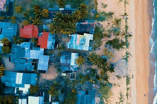 ağaçlar, binalar, çatılar, dalgalar içeren Ücretsiz stok fotoğraf