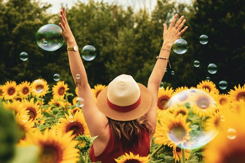 Woman Surrounded By Sunflowers