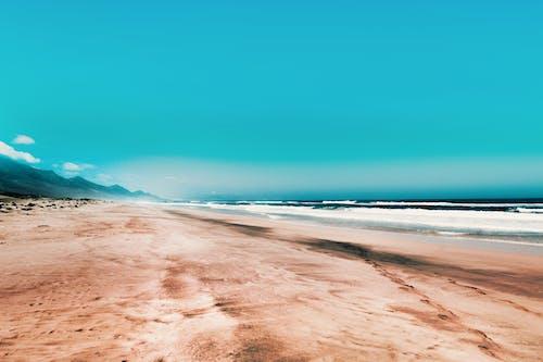 Fotobanka sbezplatnými fotkami na tému breh, jasná obloha, krajina, krajina pri mori