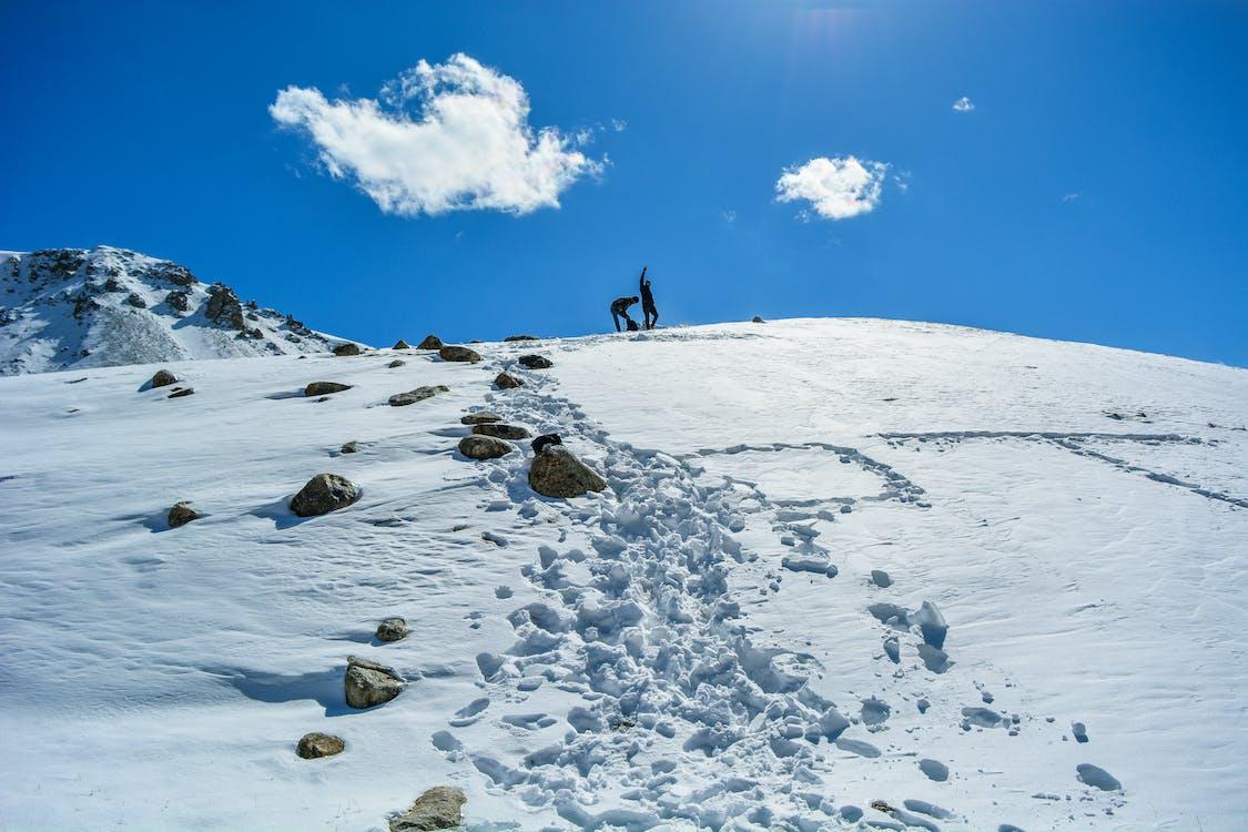 escursione mattutina, neve, neve fresca