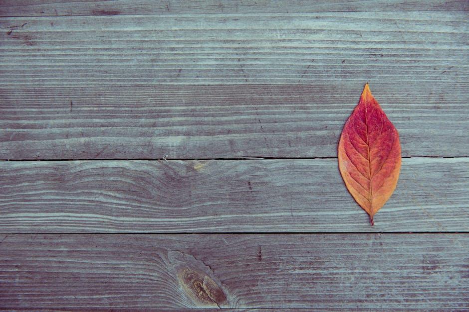 Wood pattern texture leaf