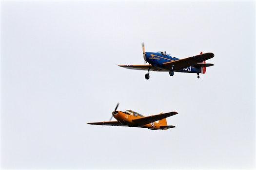 2 Planed on Flight during Daytime