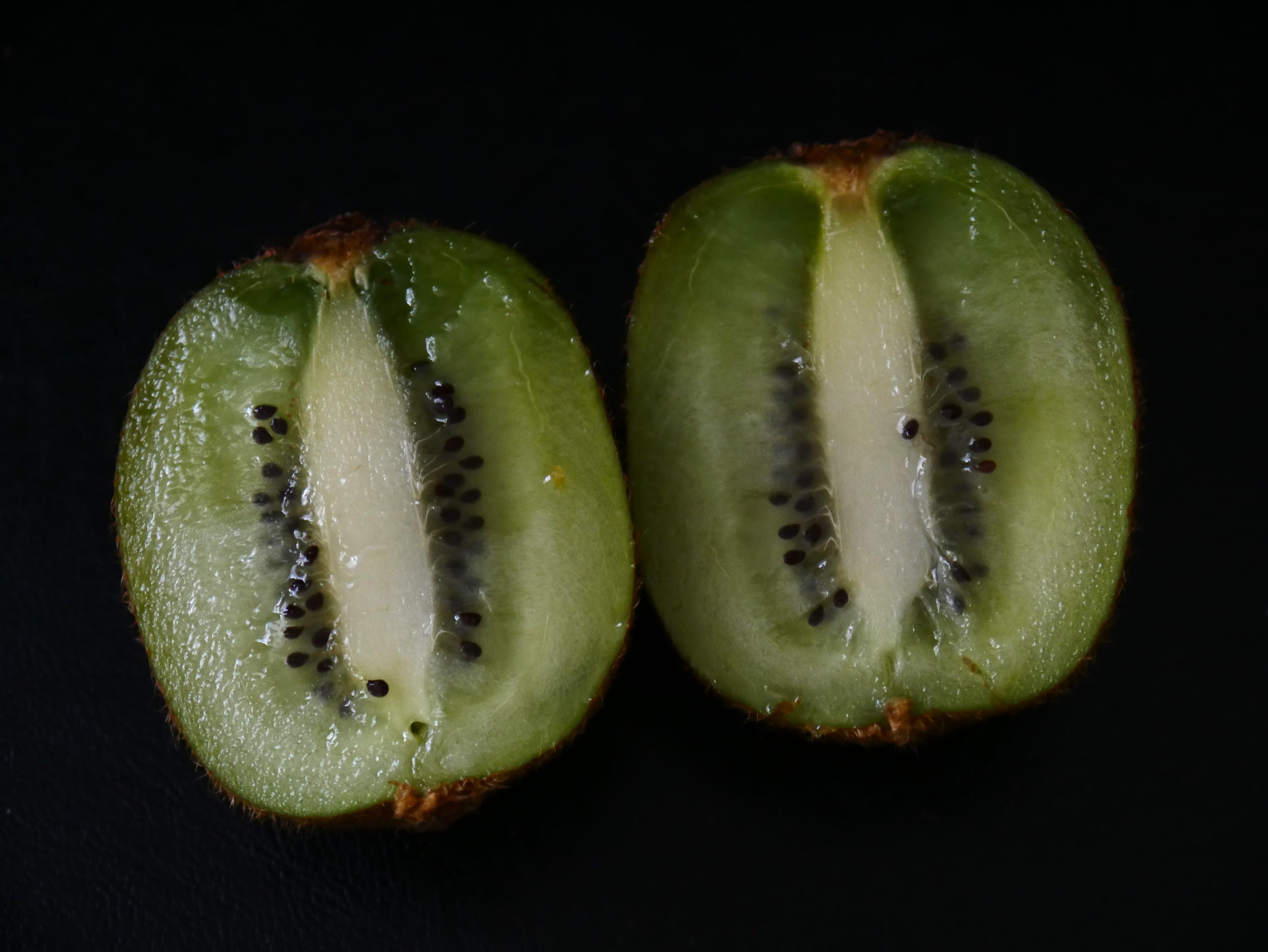 Free stock photo of healthy, green, kiwi, feeding