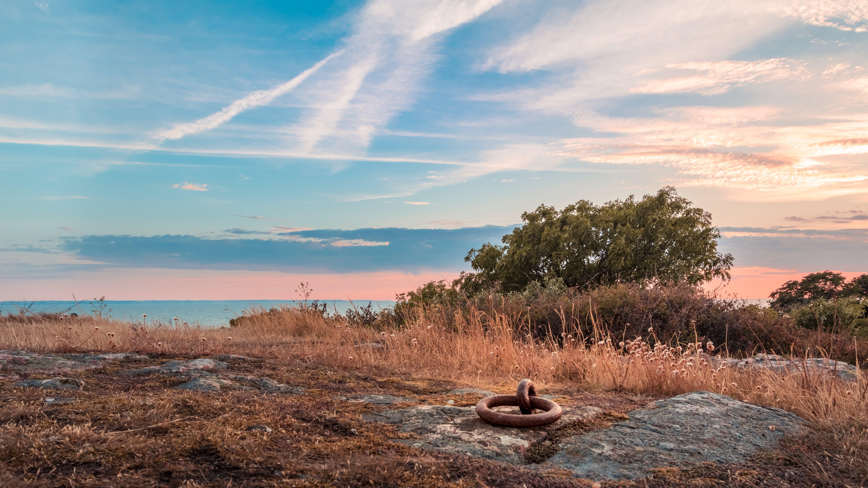 Gratis lagerfoto af aften, aftensol, blå himmel, farverig