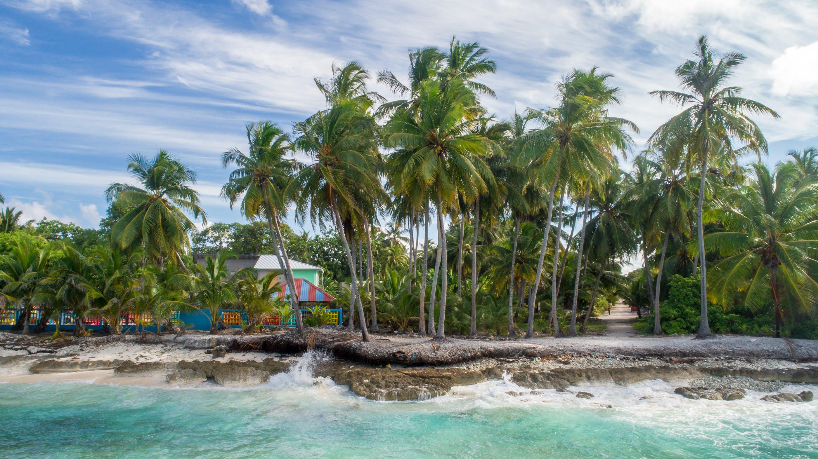 avuç içi, cennet, deniz manzarası, doğa içeren Ücretsiz stok fotoğraf