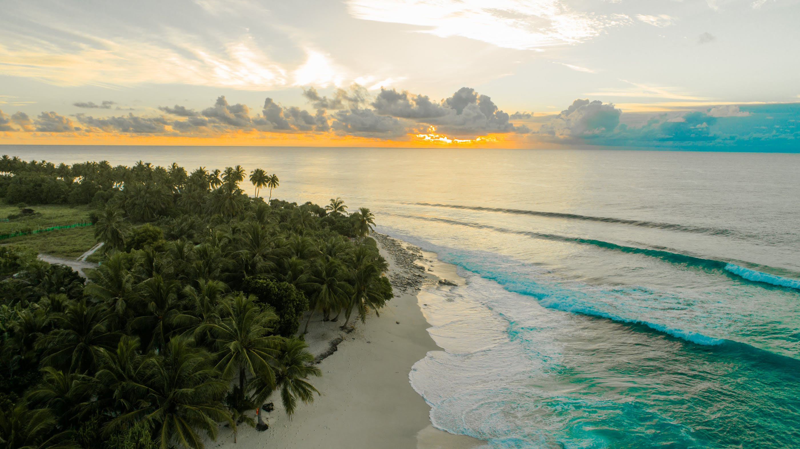 Aerial Photography of Green Palm Trees on Seashore at Golden Hour