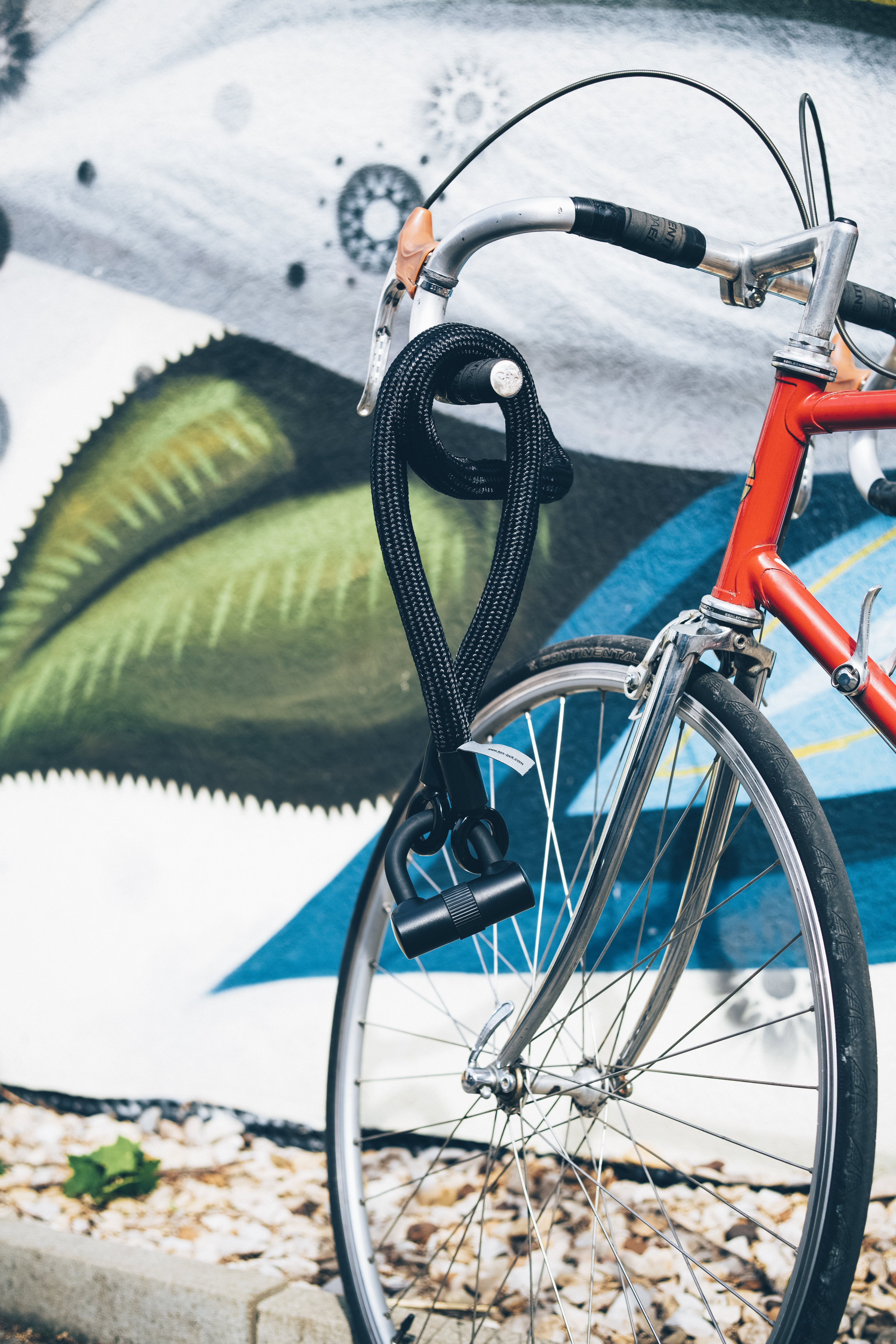 Black Cable Lock Hanged on Gray and Red Bike