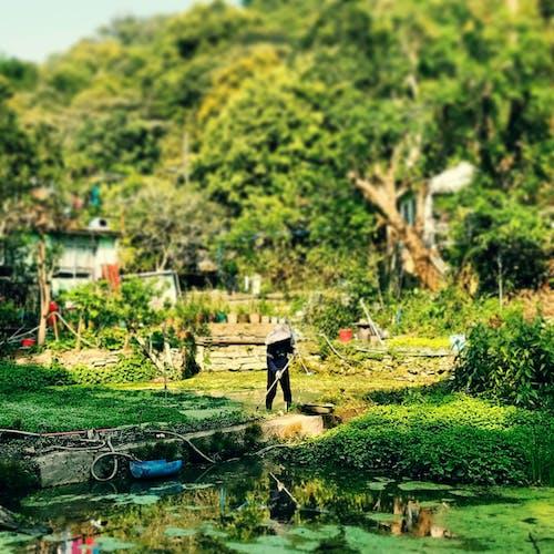 Foto profissional grátis de #campo, #fazenda, #montanhas, #natureza