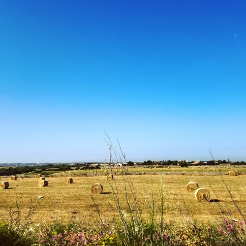 Free stock photo of #bluesky, #grass, #hay, #haystack