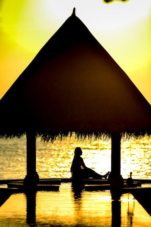 人, 側面, 反射, 太陽 的 免费素材照片