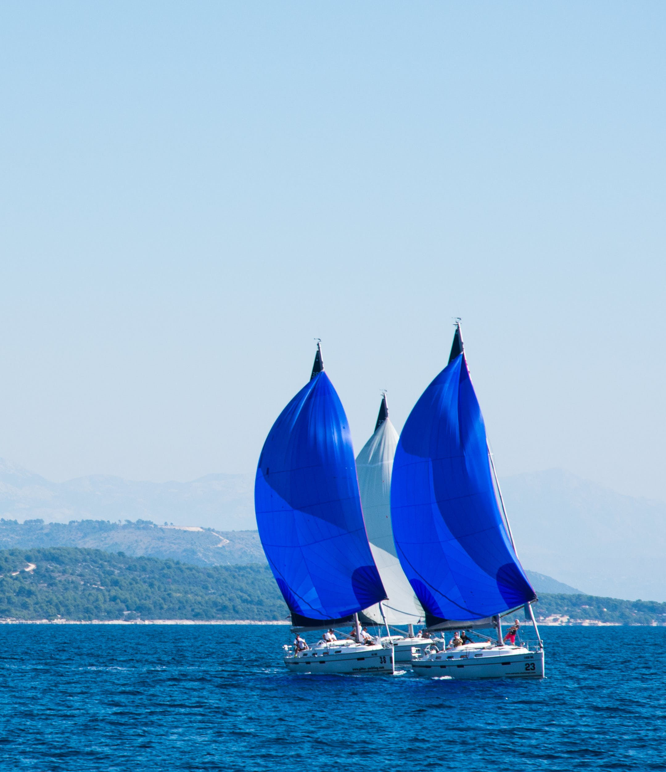 Free stock photo of sailing, sailing boats