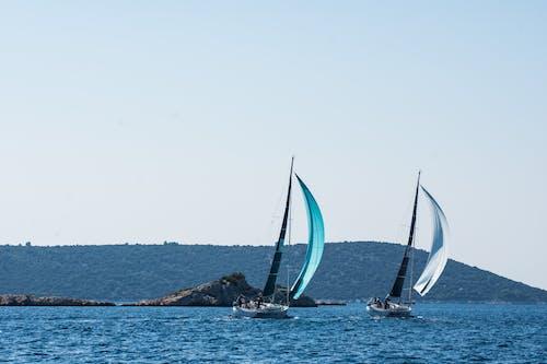 Gratis stockfoto met kijken, Kroatië, zeilboot