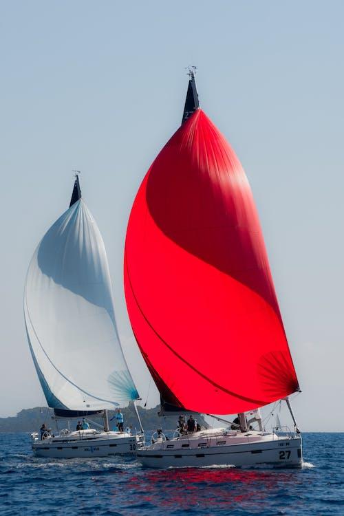 Fotos de stock gratuitas de Croacia, velero, veleros, ver