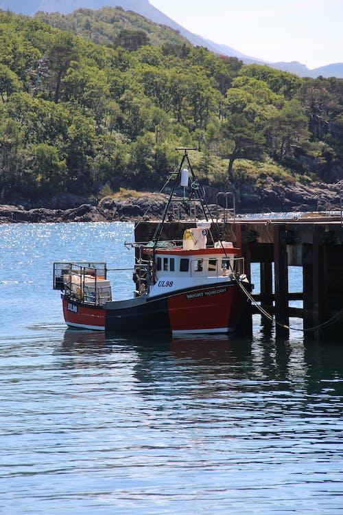Kostenloses Stock Foto zu bäume, boot, fischerboot, grün