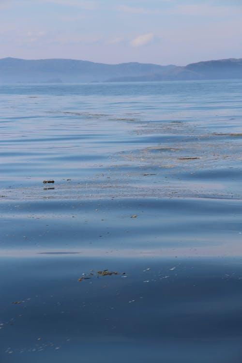 คลังภาพถ่ายฟรี ของ ทะเล, ที่ดิน, น้ำ, น้ำสงบ