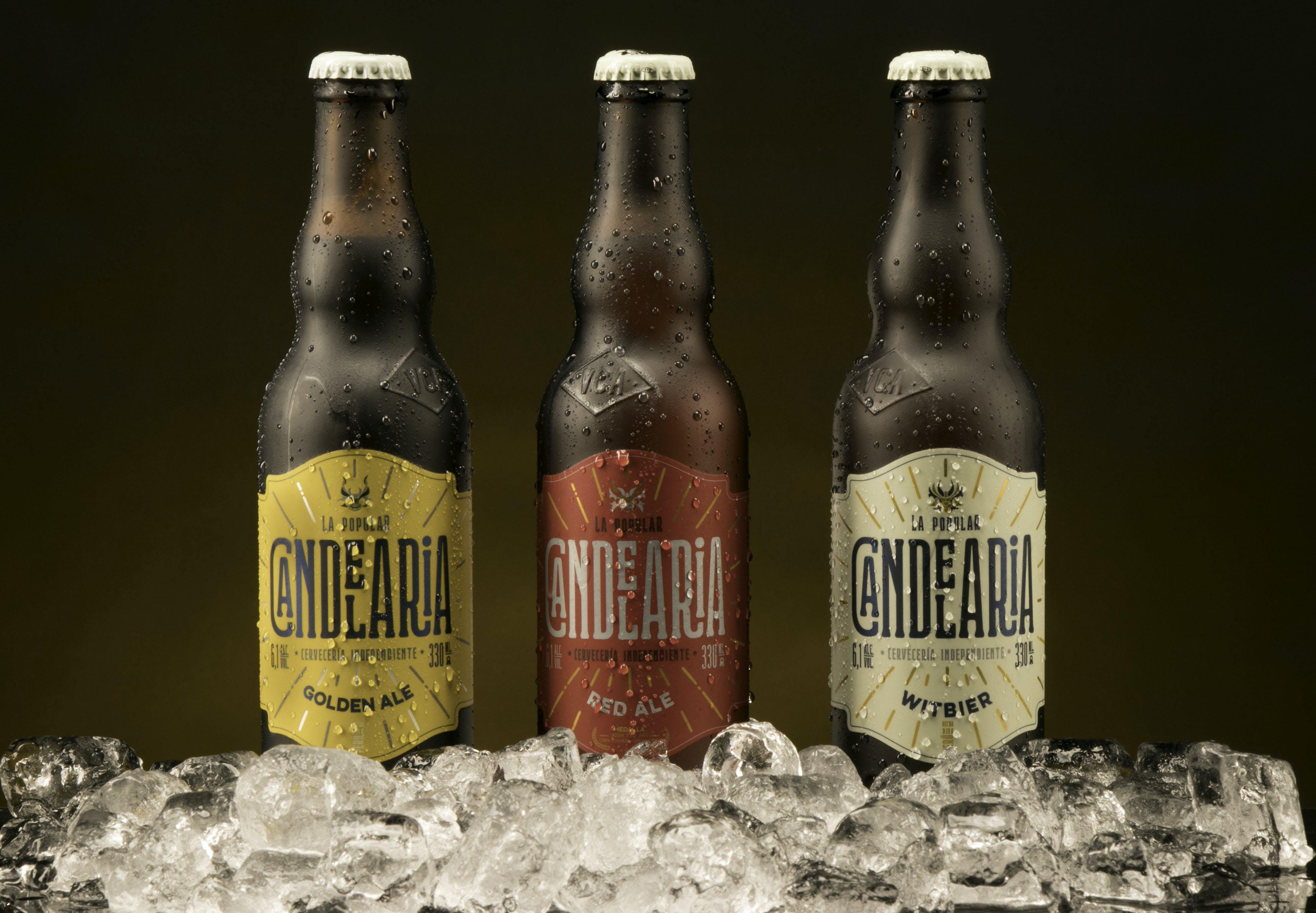 Free stock photo of beer, beer bottle, drink, drinking glasses