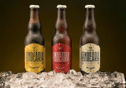 Бесплатное стоковое фото с бутылка пива, пиво, пить, стаканы