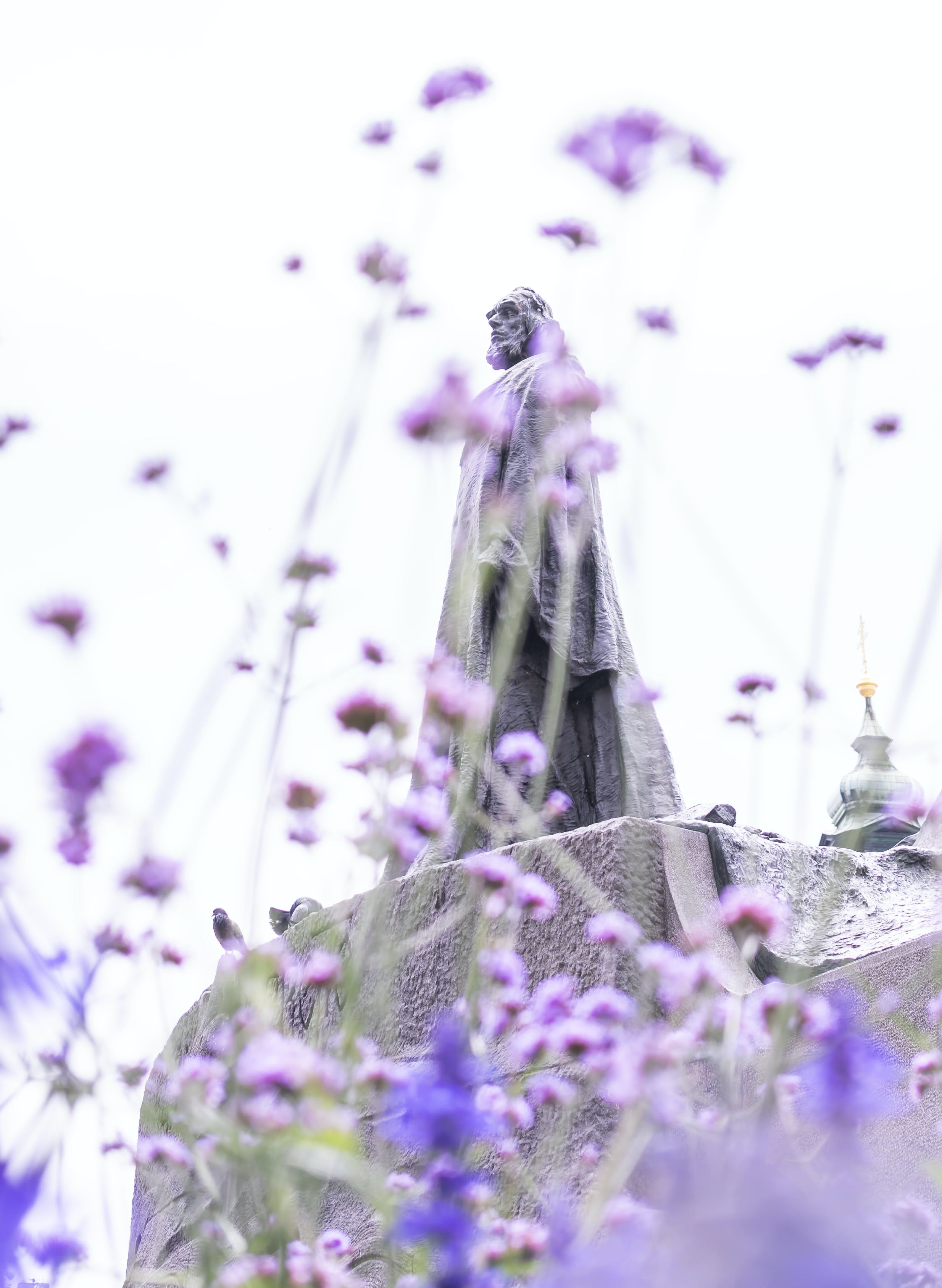 Statue And Purple Flowers