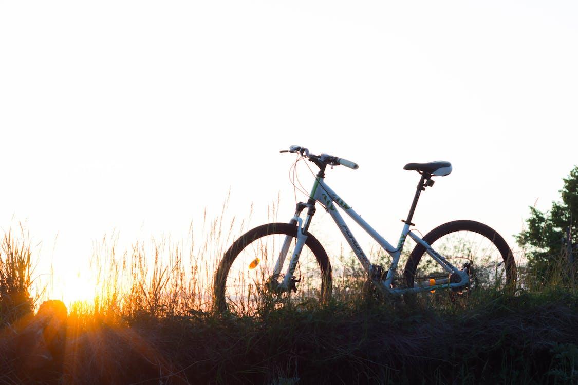 Teal Hardtail Bike on Green Grass
