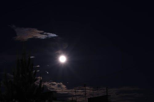 Gratis arkivbilde med måne, natt, nattehimmel