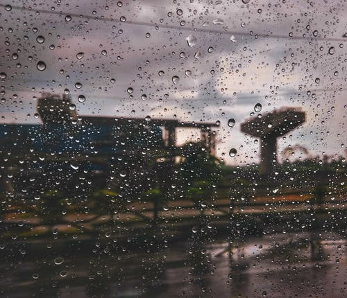 #雨の無料の写真素材