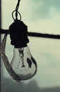 light bulb, idea, things