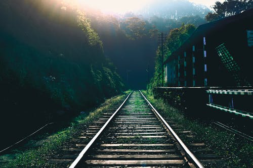 Gratis arkivbilde med jernbane, jernbanestasjon, natur, skog