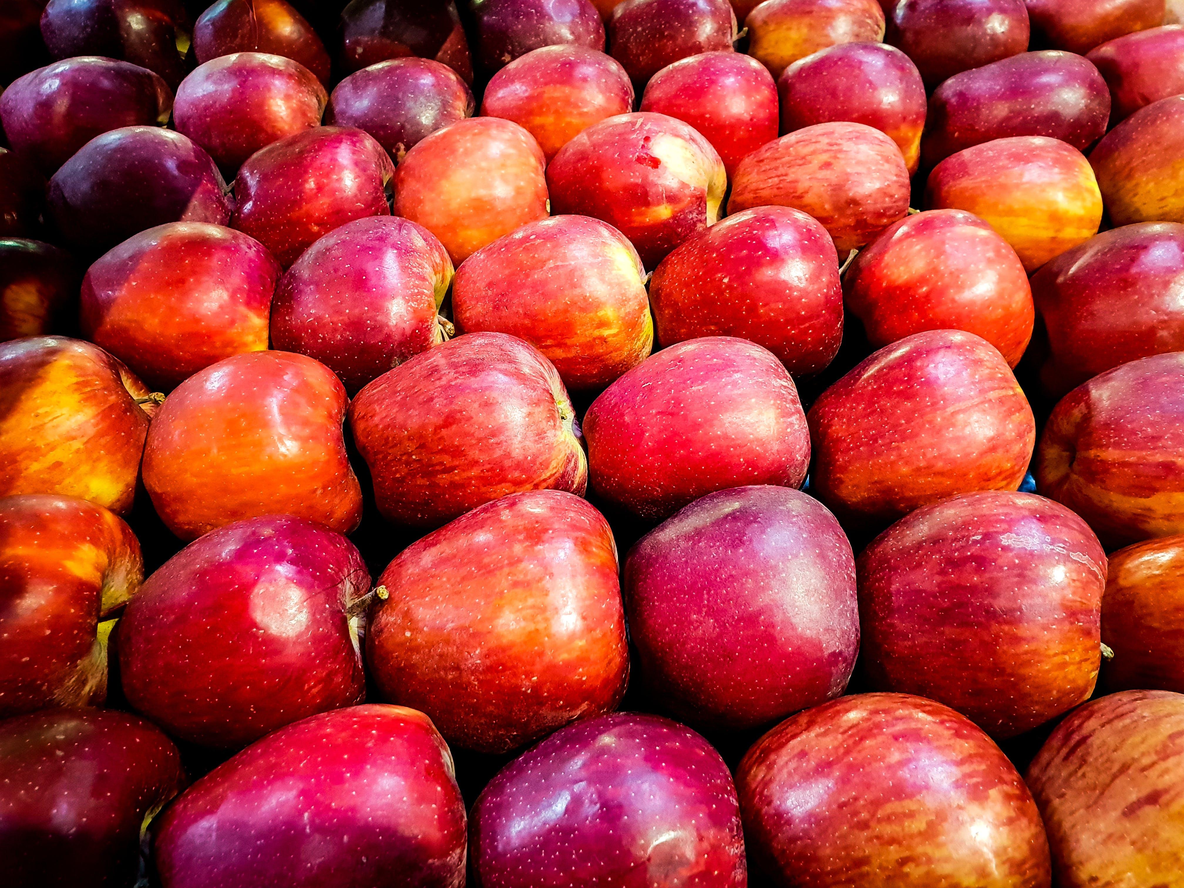Kostenloses Stock Foto zu äpfel, frucht, hintergrund, natur