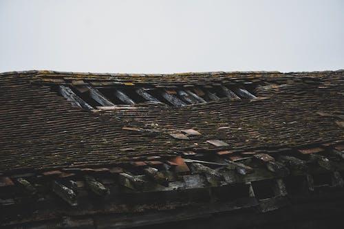 Ảnh lưu trữ miễn phí về bị bỏ rơi, bị hỏng, chuồng, mái nhà