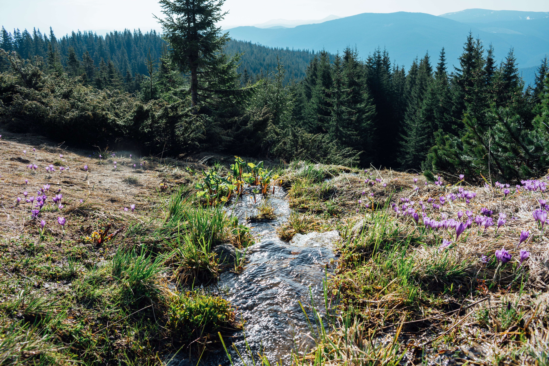 Kostenloses Stock Foto zu abenteuer, ausflug, berg, berge