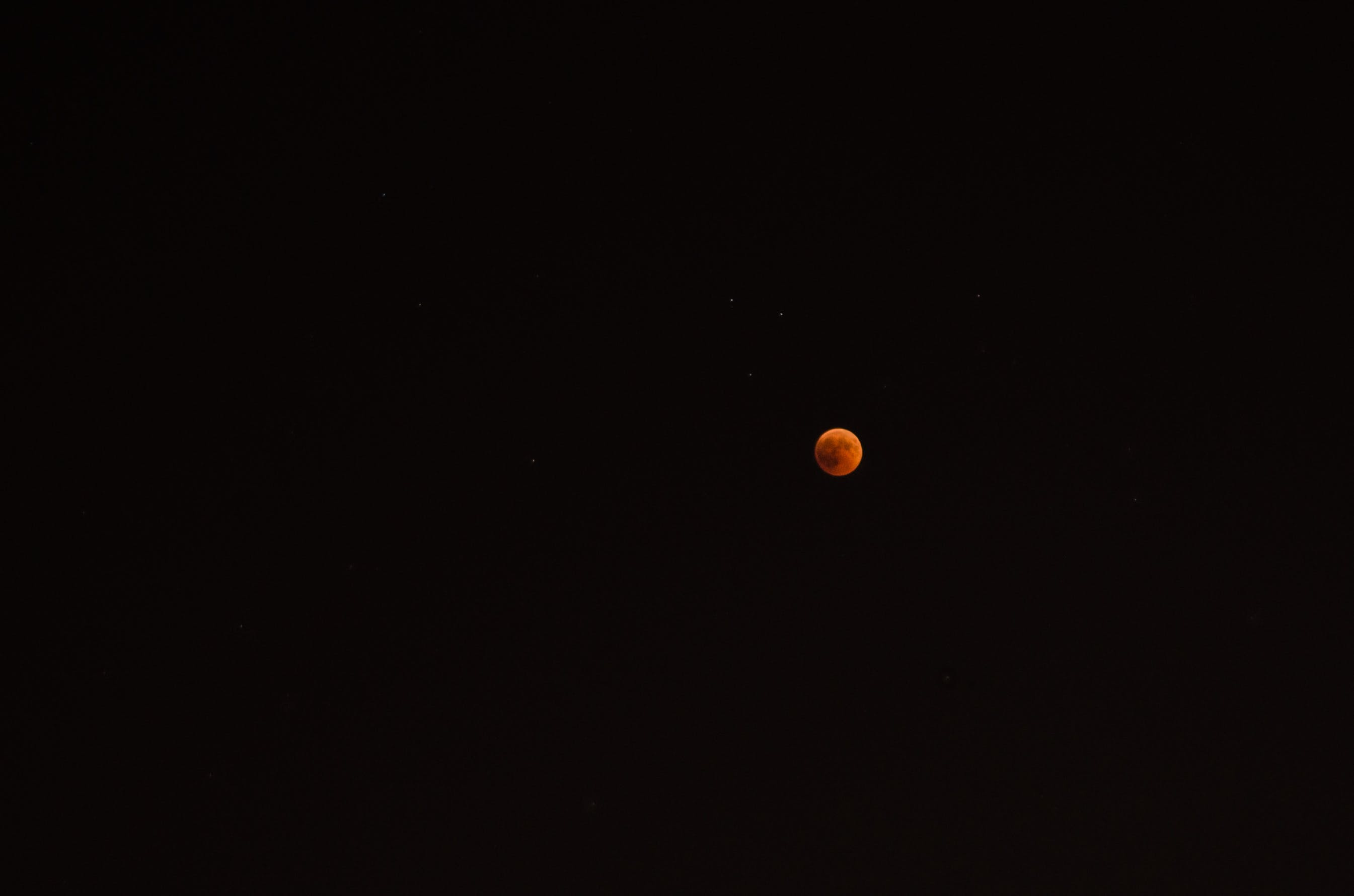 Free stock photo of bloody moon, full moon, moon, red moon