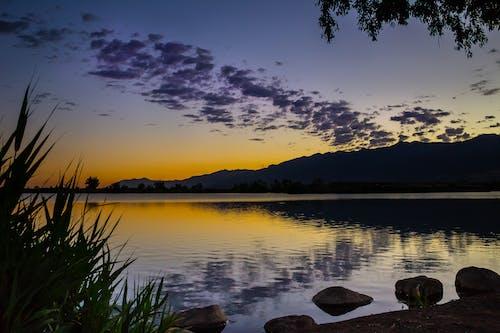 Бесплатное стоковое фото с берег реки, вода, гора, деревья