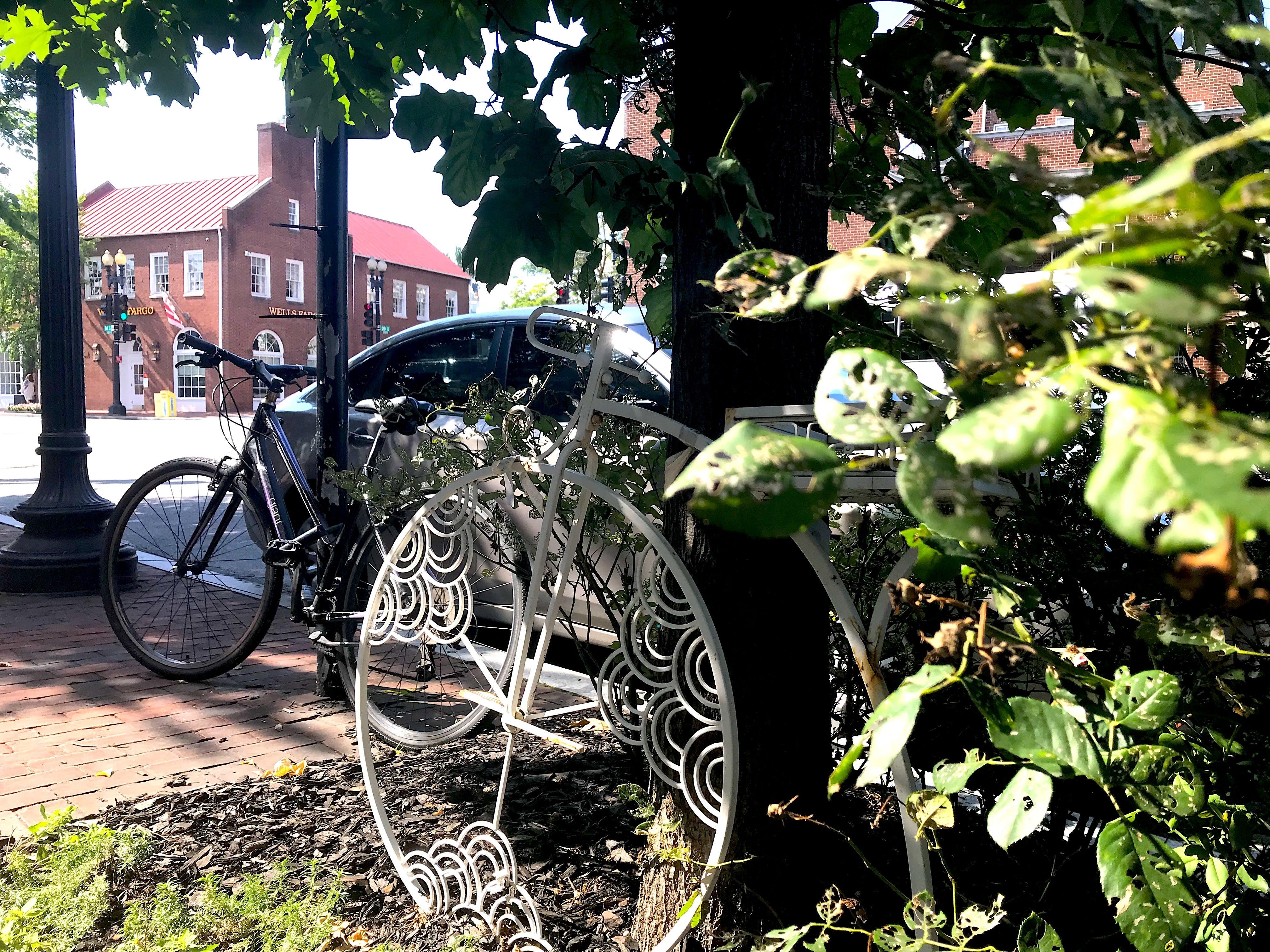 Free stock photo of #leaves, #white, #bike
