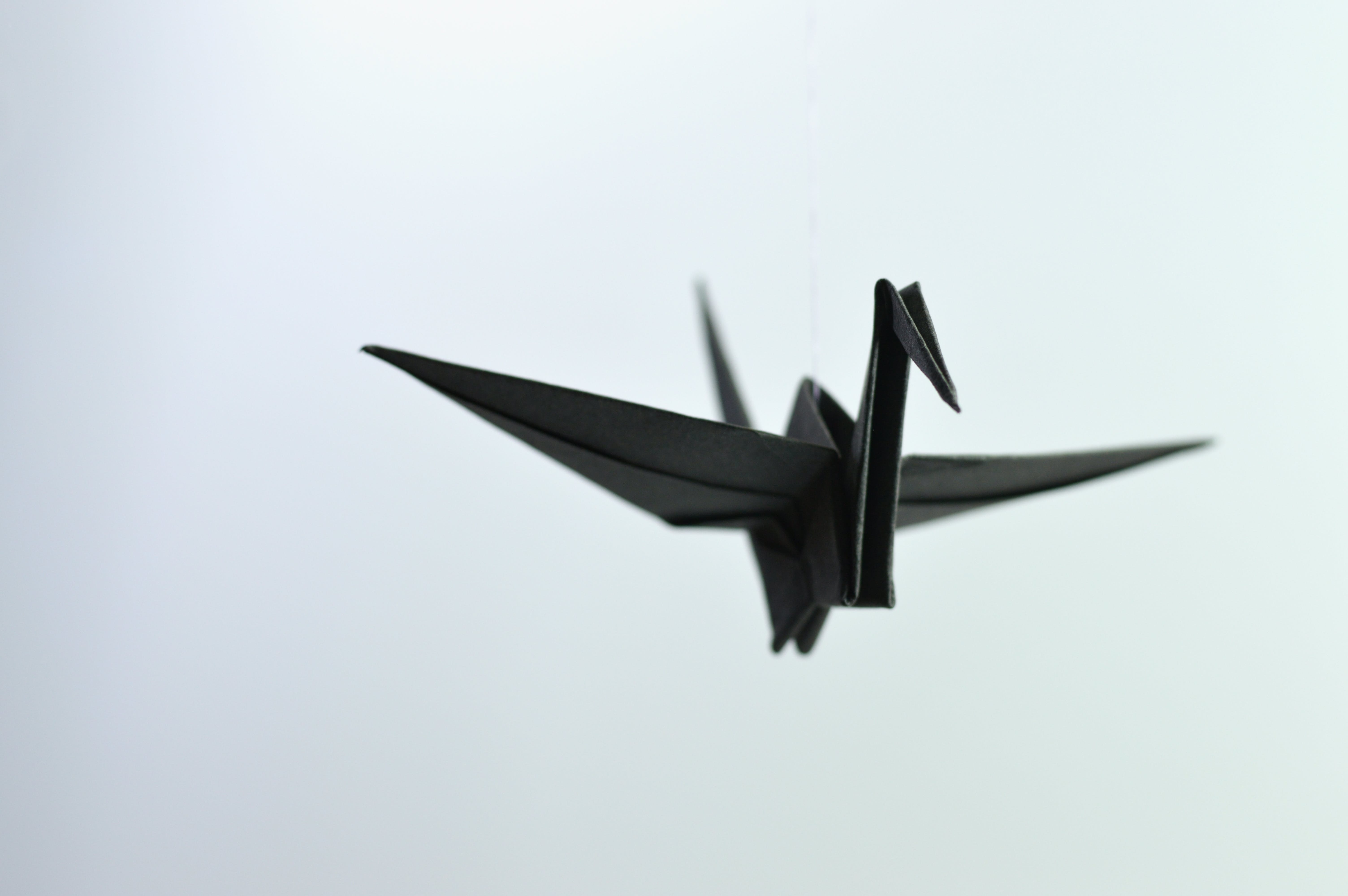 Selective Focus Photo Of Origami