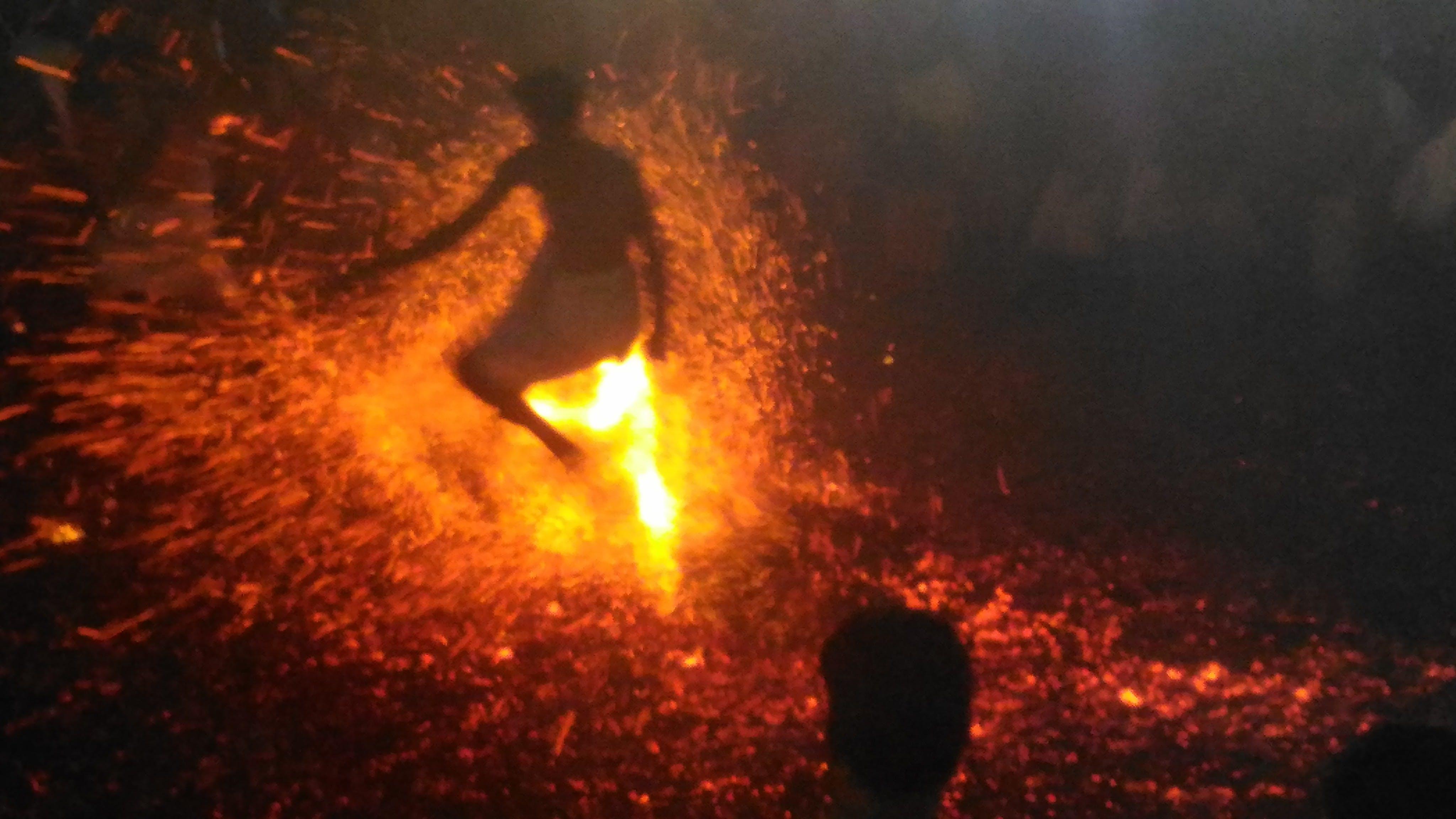 Free stock photo of kerala, tradition