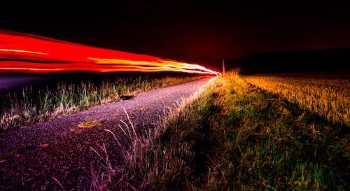 Kostenloses Stock Foto zu gras, langzeitbelichtung, licht, lichtstreifen