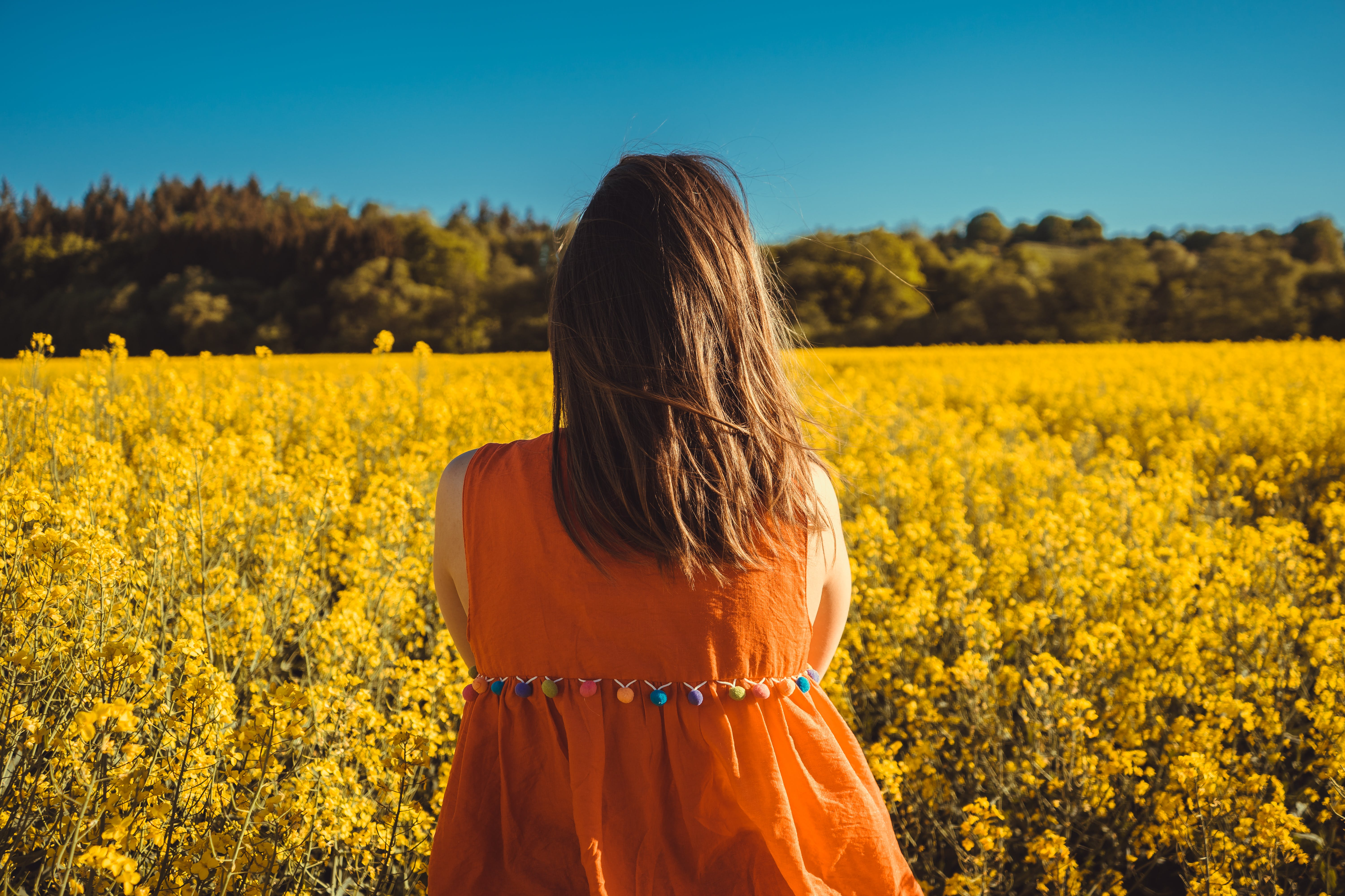 Photo of Woman Looking at a Flower Field.