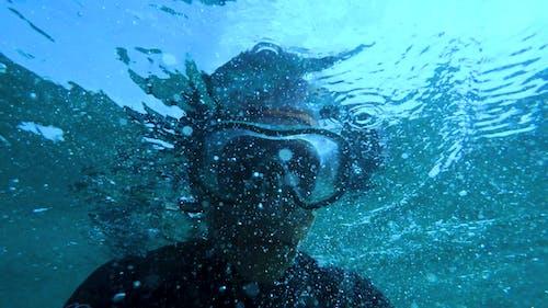 Kostnadsfri bild av äventyr, doppa, dyka, dykare
