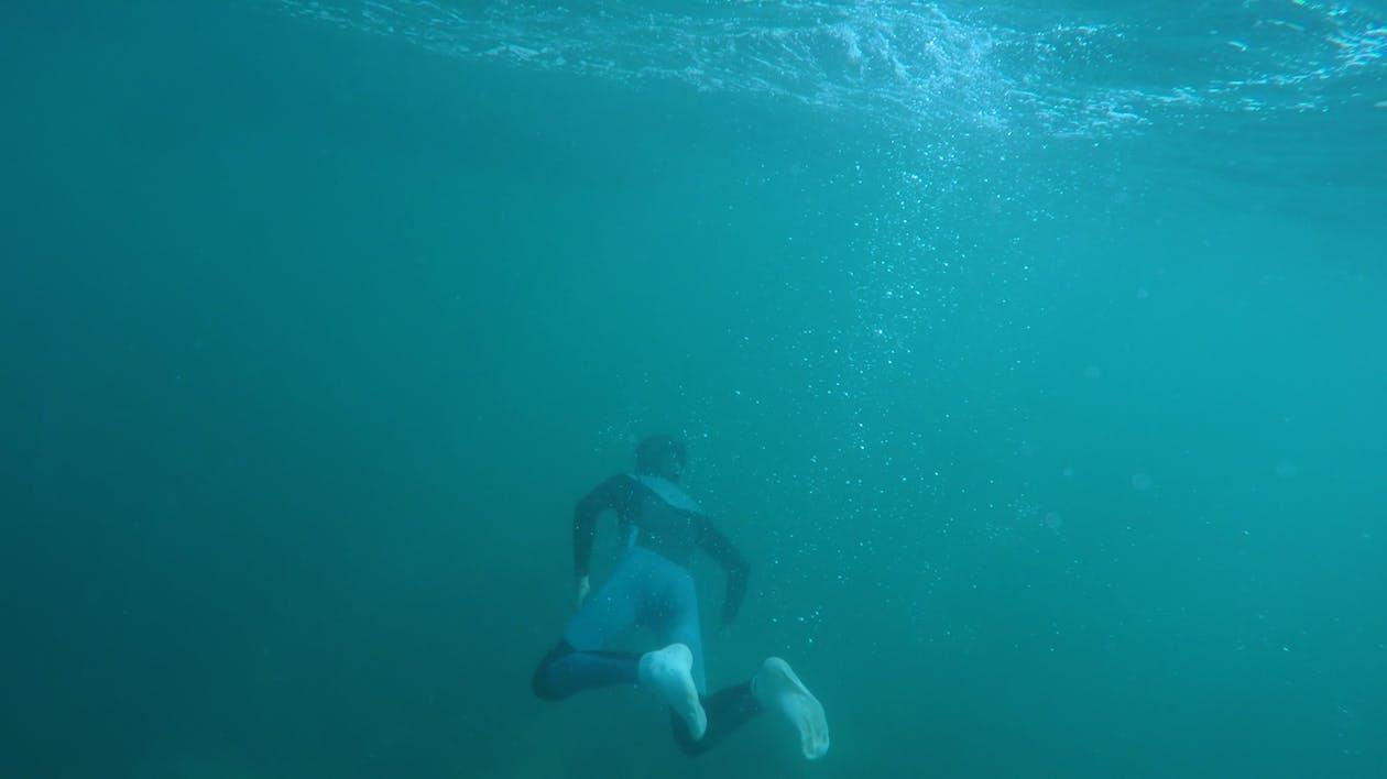 acción, agua, arrecife