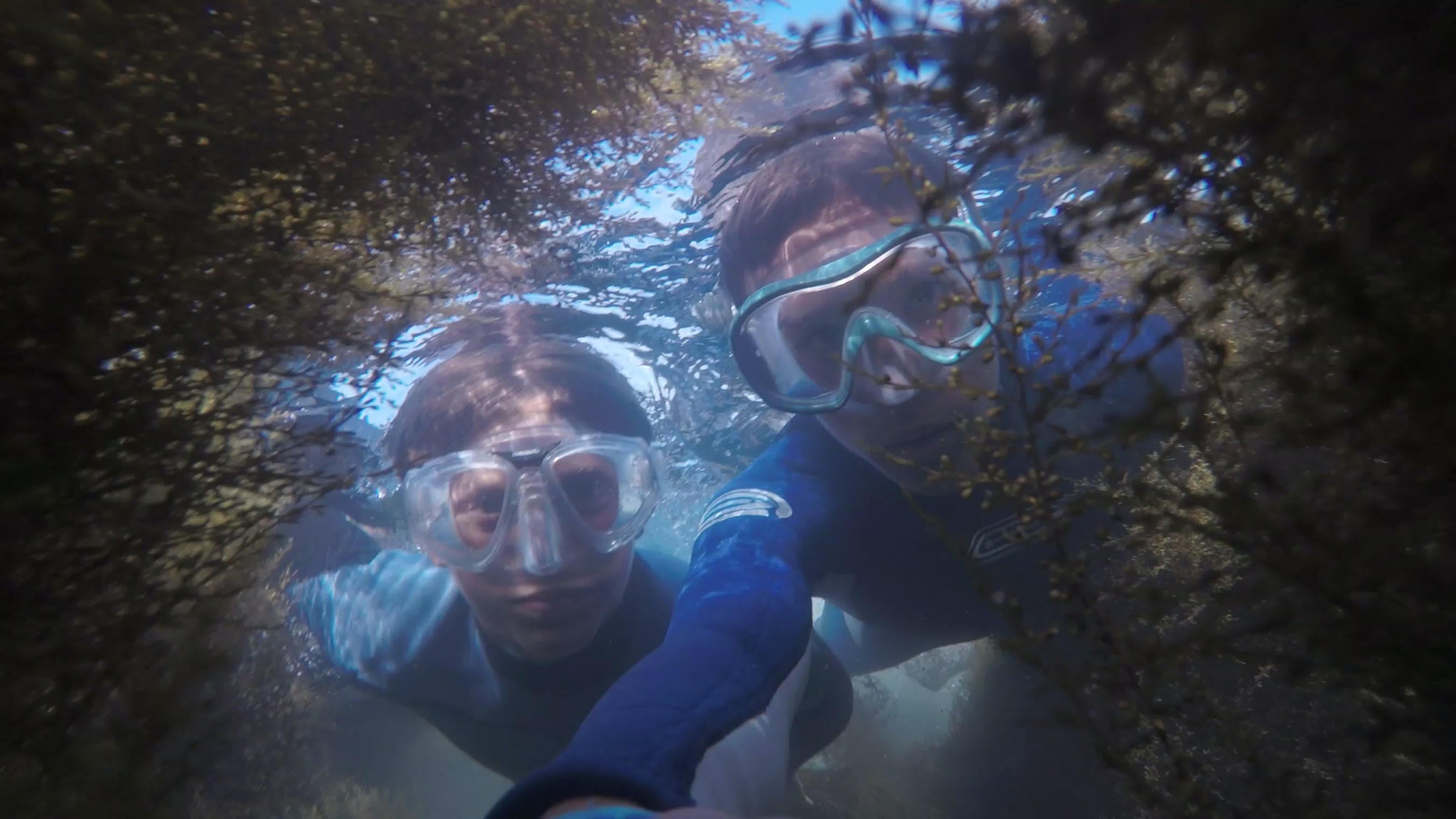 Photo of Two People Snorkeling.