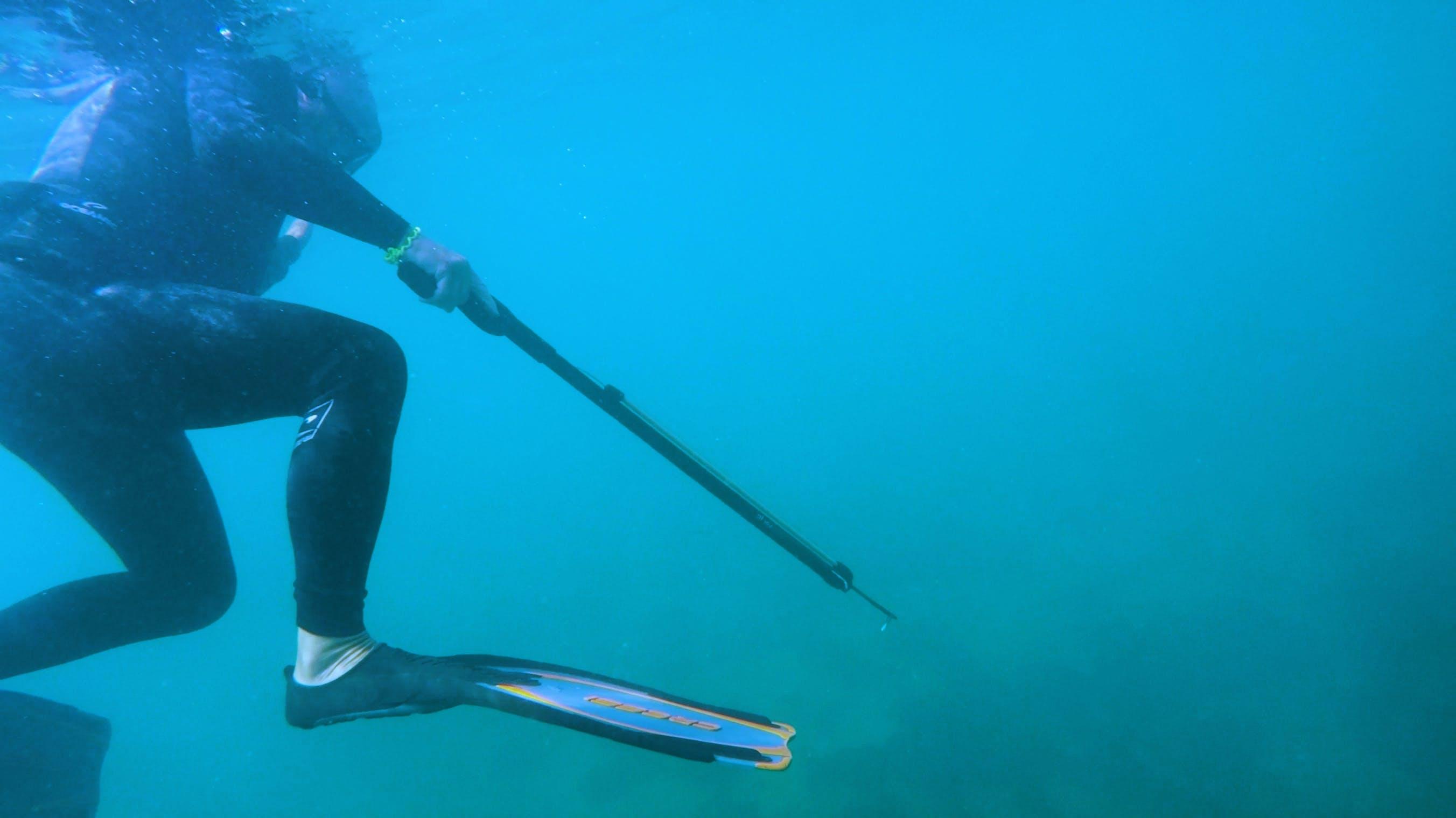 Diver Holding Speargun