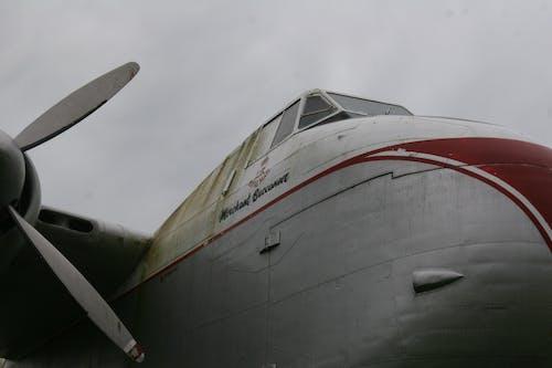 プロペラ, 巨大な飛行機, 自動車運搬船, 飛行機の無料の写真素材