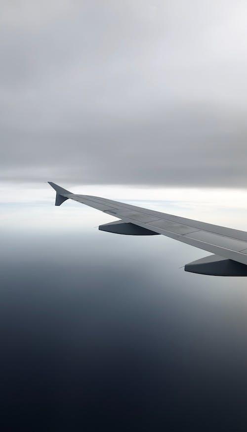 คลังภาพถ่ายฟรี ของ ปีก, ปีกเครื่องบิน, พื้นหลัง