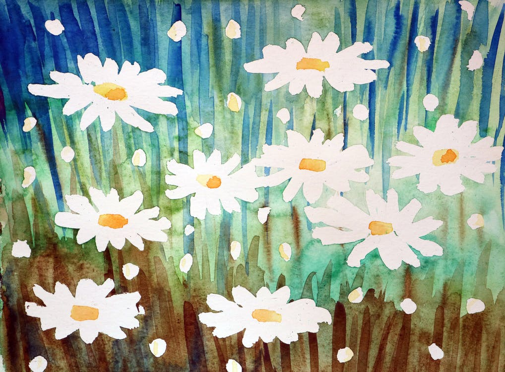 blue, brown, daisy
