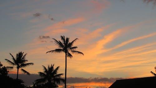 Free stock photo of sunset at Napili Bay