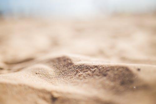 Immagine gratuita di deserto, litorale, macinato, macro