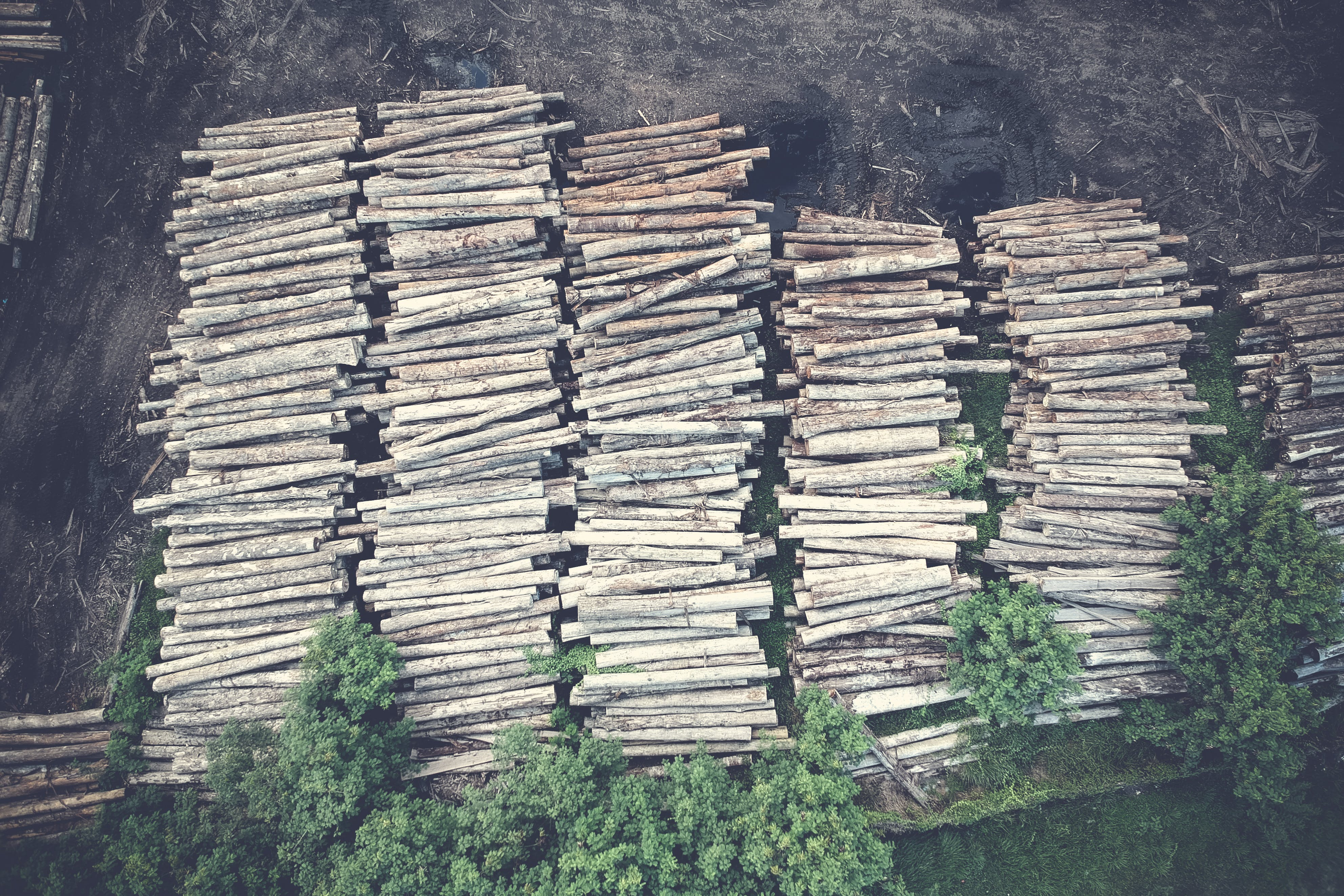 Aerial Photography of Stack of Firewood