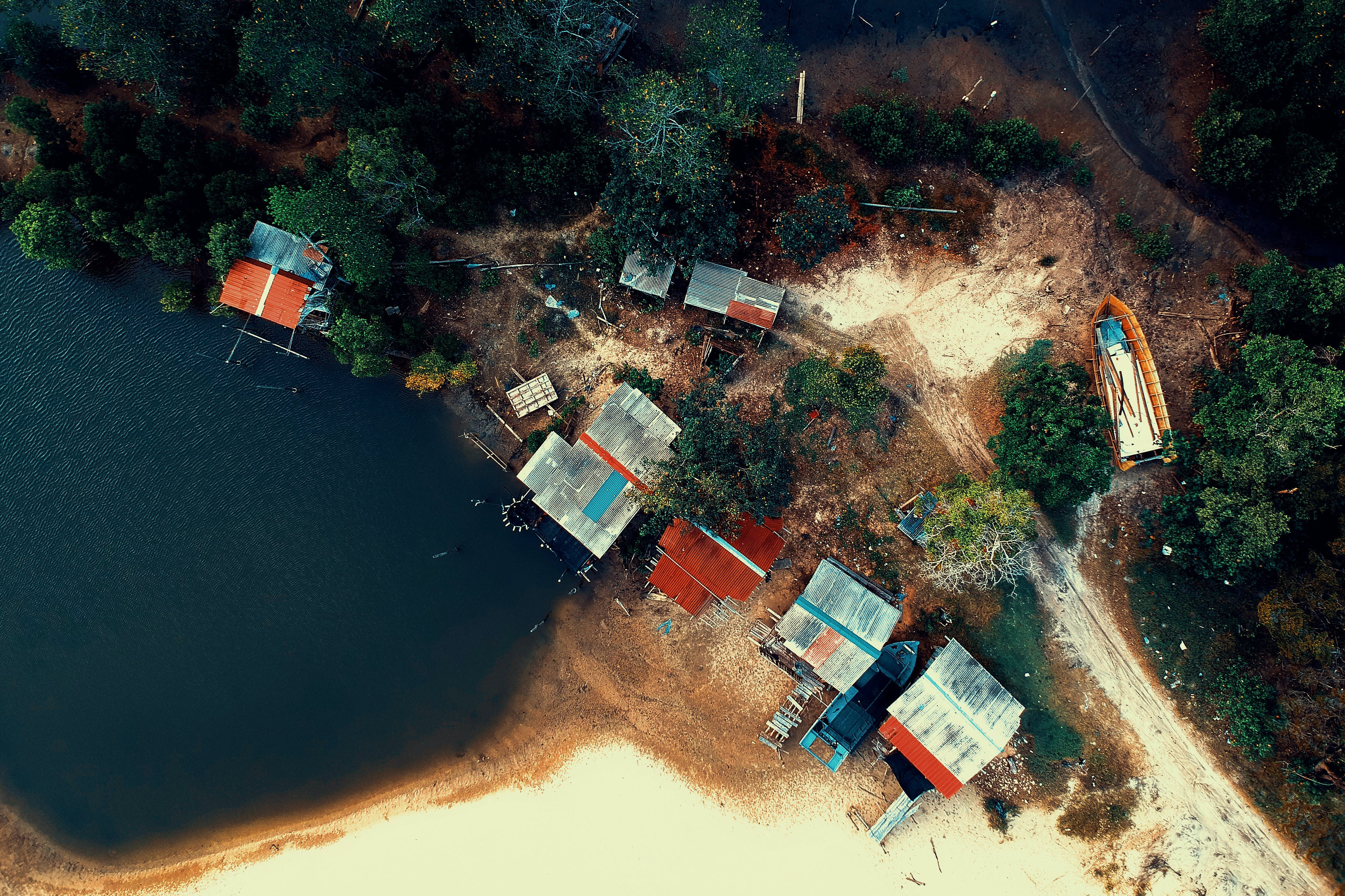 Aerial Photography of Building Beside Trees and Body of Water