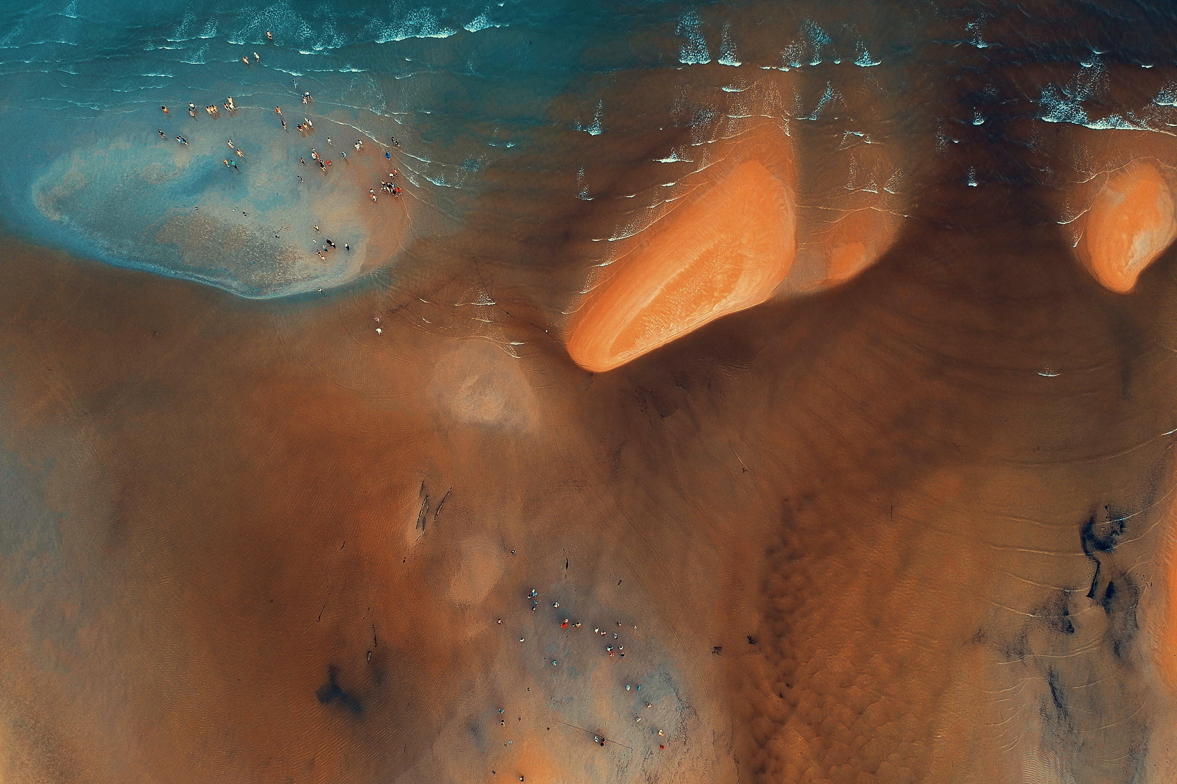 Brown Shore Satellite Image